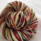 I am a Fan Four Stripe Self Striping Yarn