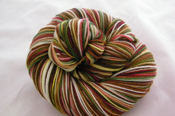 Teddy Bear Picnic Six Stripe Self Striping Yarn