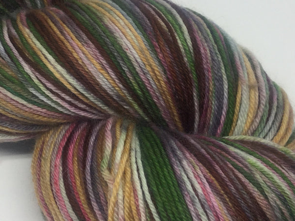 ZomBody Needs a Brain Six Stripe Self Striping Yarn