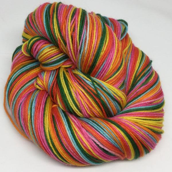 Animal Dreams Six Stripe Self Striping Yarn