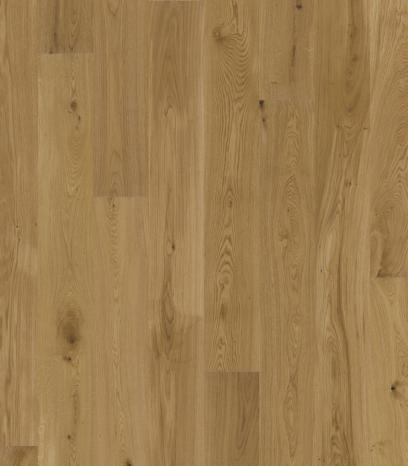 OAK RUSTIC - FRENCH OAK