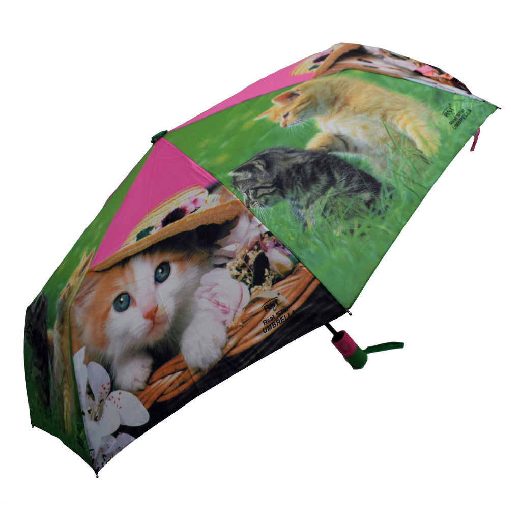 Automatic Colorful Umbrella with Printed Cat Pictures
