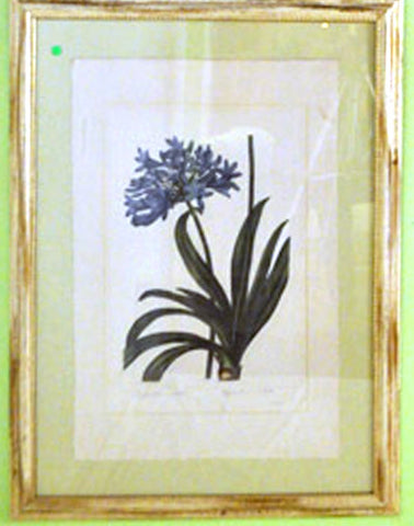 Blue Flowers Botanical Print