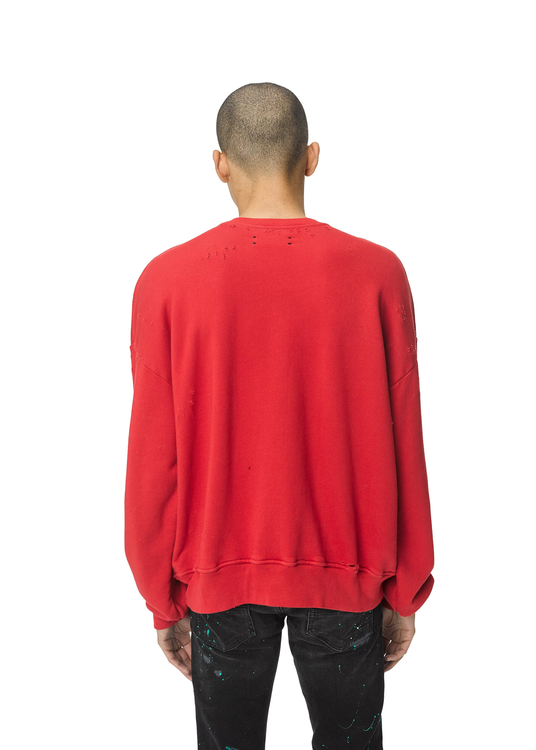 city-dragon-crewneck-scarlet-image-5