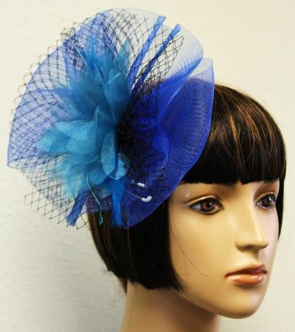 Blue Feather Bow and Net