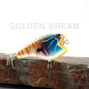 PH Crazy Ace in Golden Bream