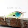 PH Custom Lures Squeaky P in Lime Gill