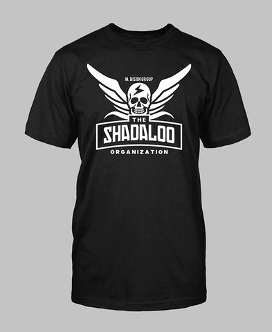 2701 - Shadaloo