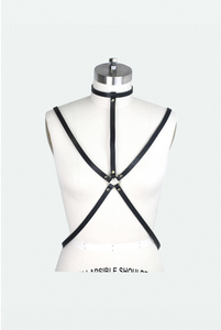 Leather Harness with Gold or Silver Tone Hardware