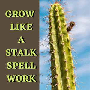 Grow Like A Stalk Spell