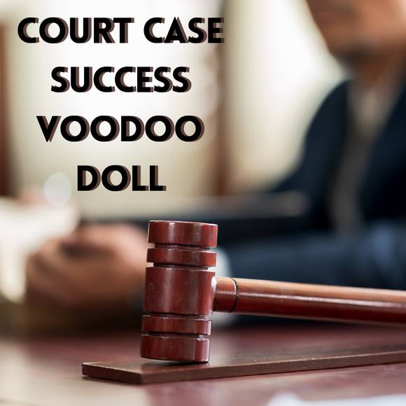 Court Case Success Voodoo Doll