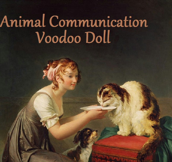 Animal Communication Voodoo Doll