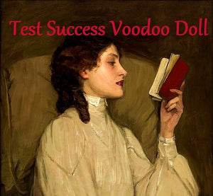 Test Success Voodoo Doll