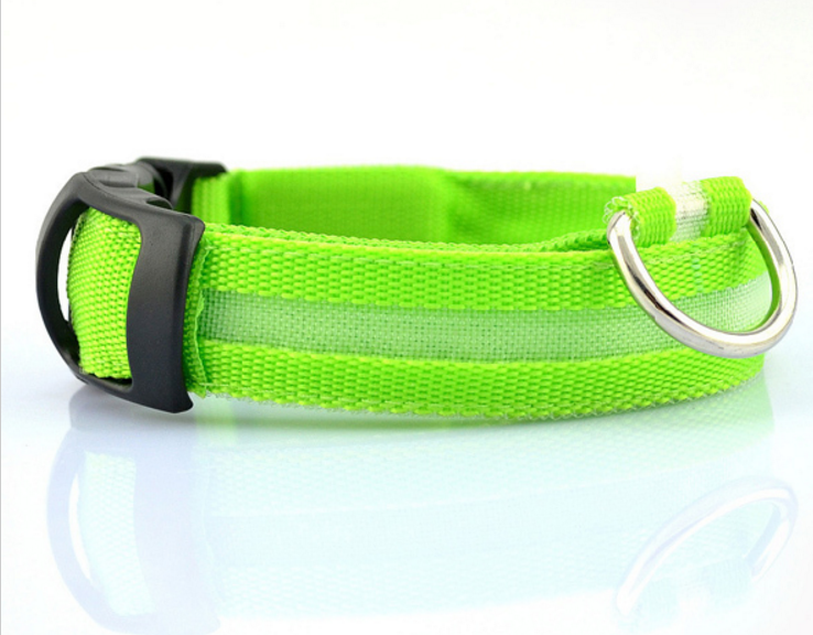 Bright Neon Pet Collar