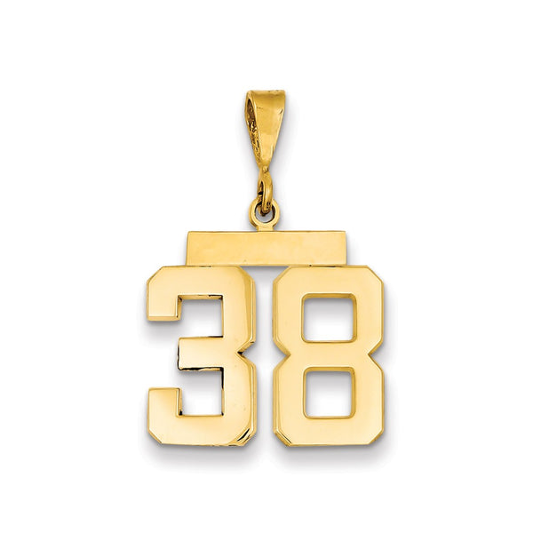 14k Medium Polished Number 38 Charm