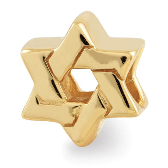 Sterling Silver Gold-plated Reflections Star of David Bead