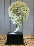 "Bonsai Style Deco Lamp Sculpture 19"" - Routes Gallery"