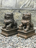 "Foo Dog Lion Guardian Statue Pair 10"" - Routes Gallery"