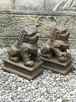 Foo Dog Lion Guardian Statue Pair 10""