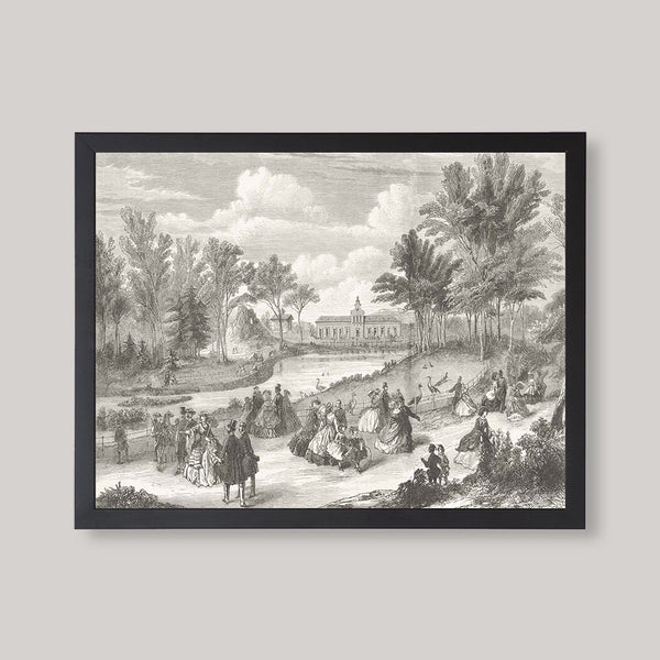 French Landscape Illustration