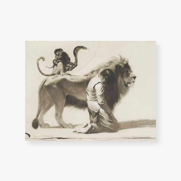 the man and the lion print
