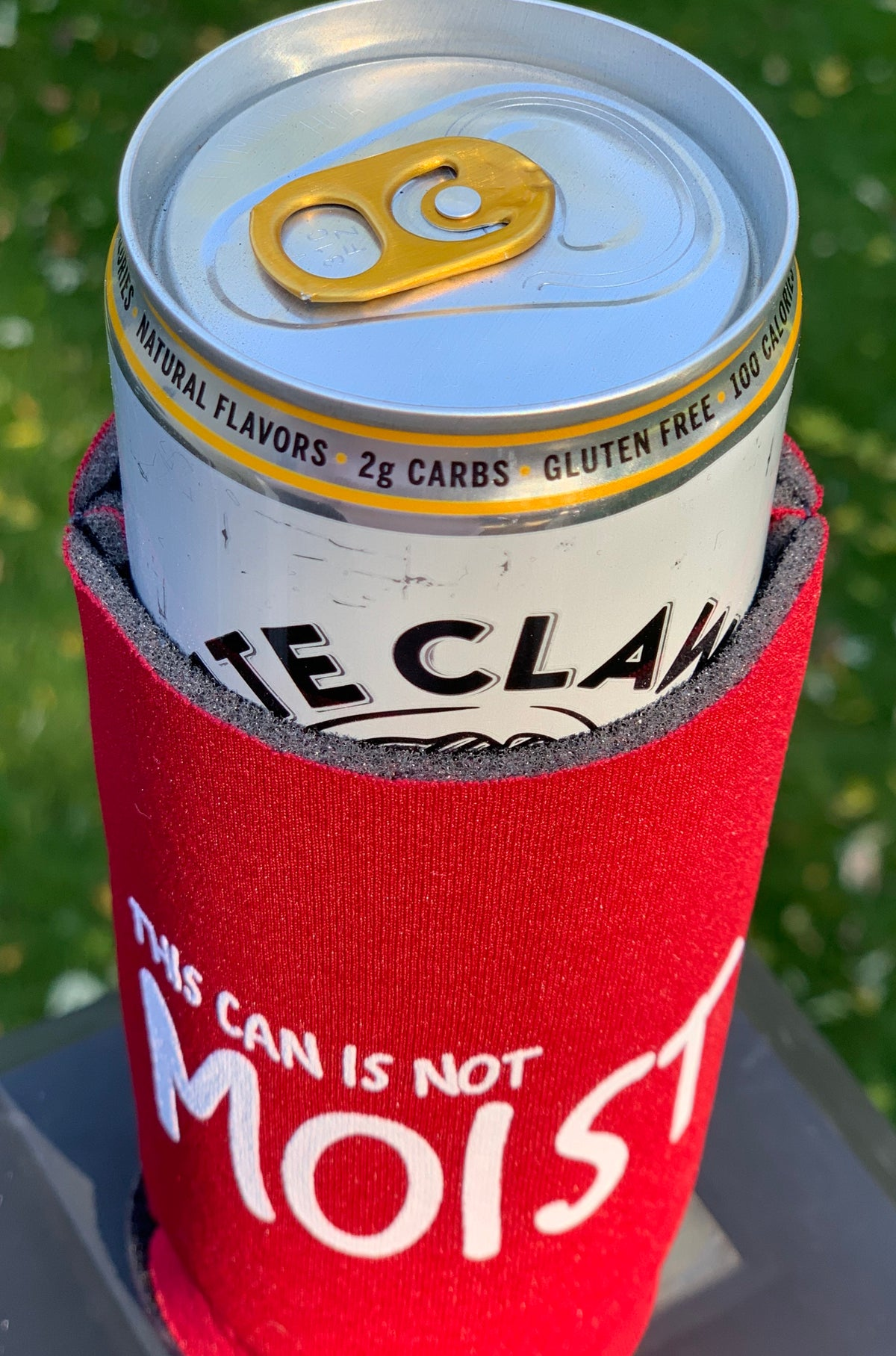 Slim Can Koozie This Can is Not Moist