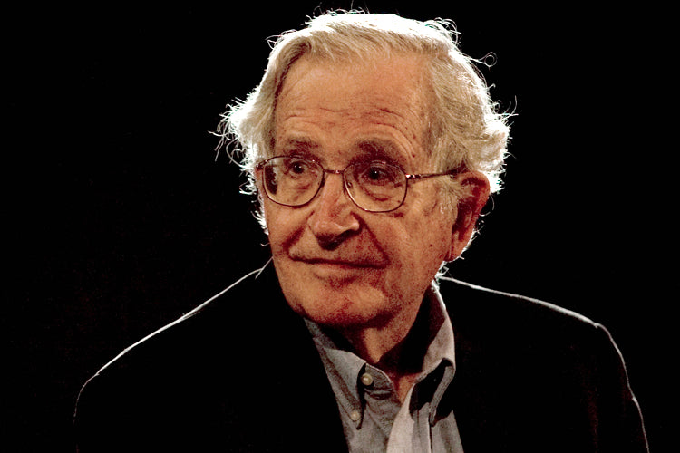 Noam Chomsky: How America's Way of Thinking About the World Naturally Produces Human Catastrophes * digital - free * transcript with link to West Wing Peters Map clip
