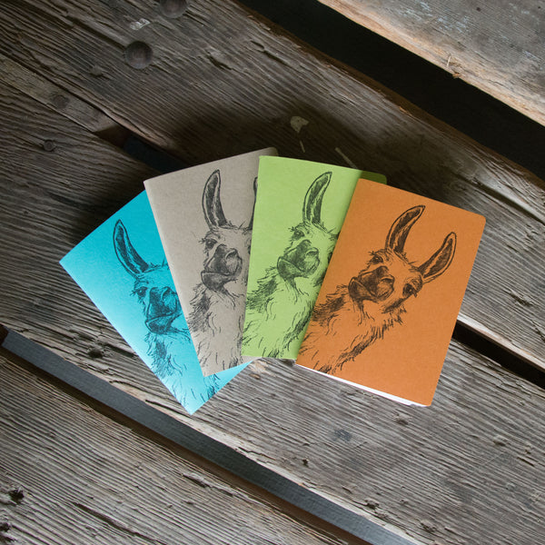 Llama Notebooks, hand drawn and staple bound, letterpress printed eco friendly blank journal