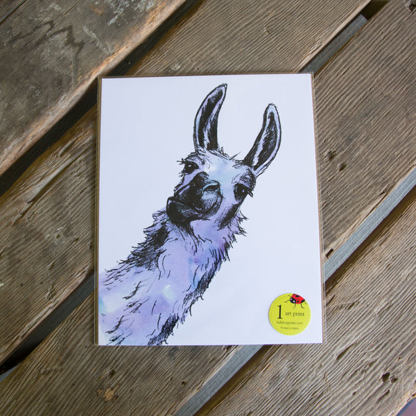 Llama art print, eco friendly