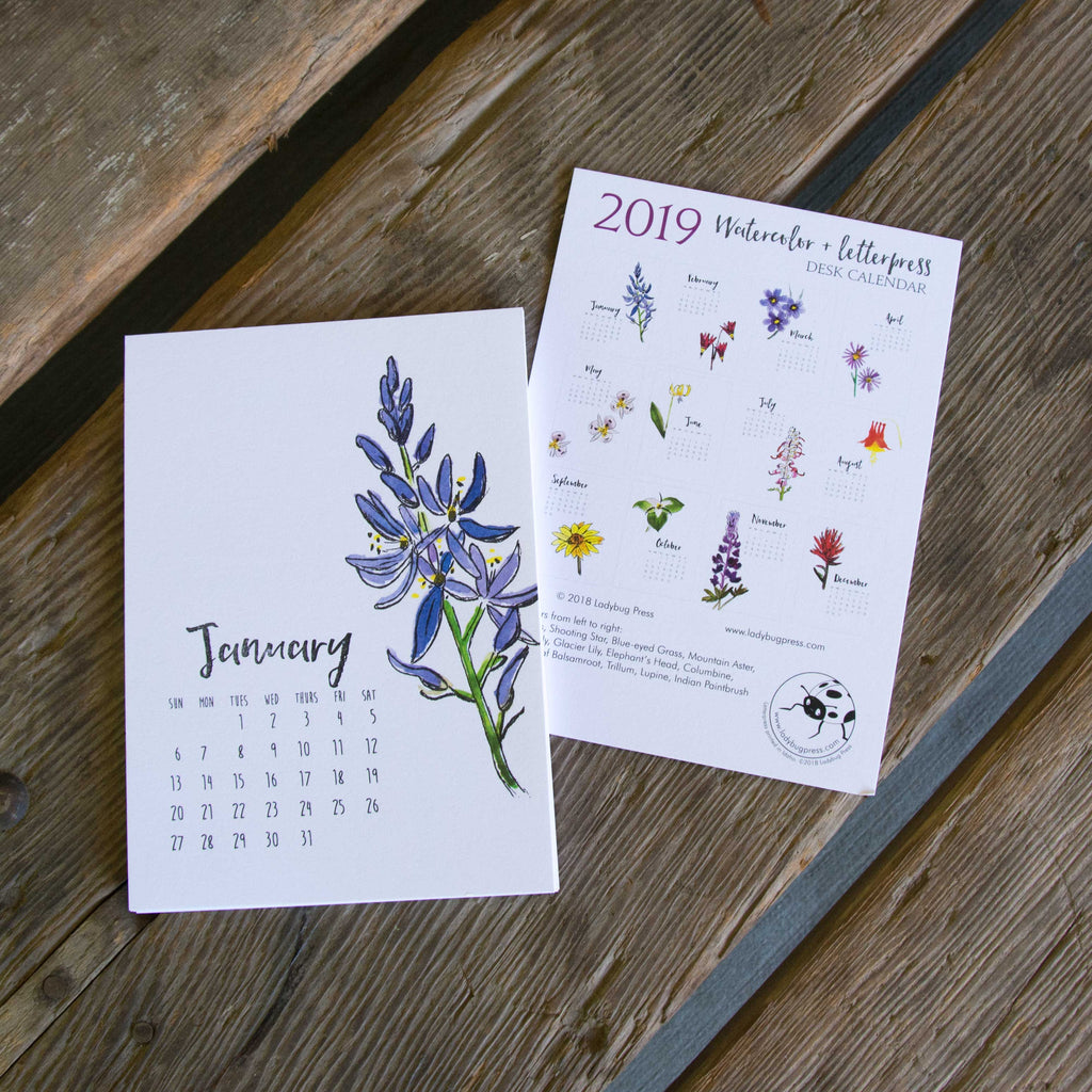 2019 Watercolor and Letterpress Wildflower Desk Calendar, hand drawn, letterpress printed eco friendly