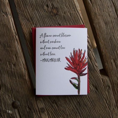 Max Muller quote card, Indian paintbrush wildflower quote, letterpress printed card. Eco friendly