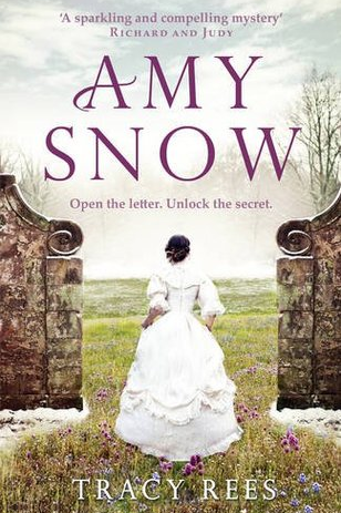<p><strong>AMY SNOW: A Novel</strong></p> <p><strong>By Tracy Rees</strong></p> <p> </p>