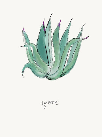 Agave Plant - Digital Download