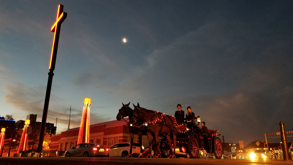 A group of adults riding a carriage pulled by two black horses wearing red Scoot Boots at the Dark Mofo event in Hobart, Tasmania