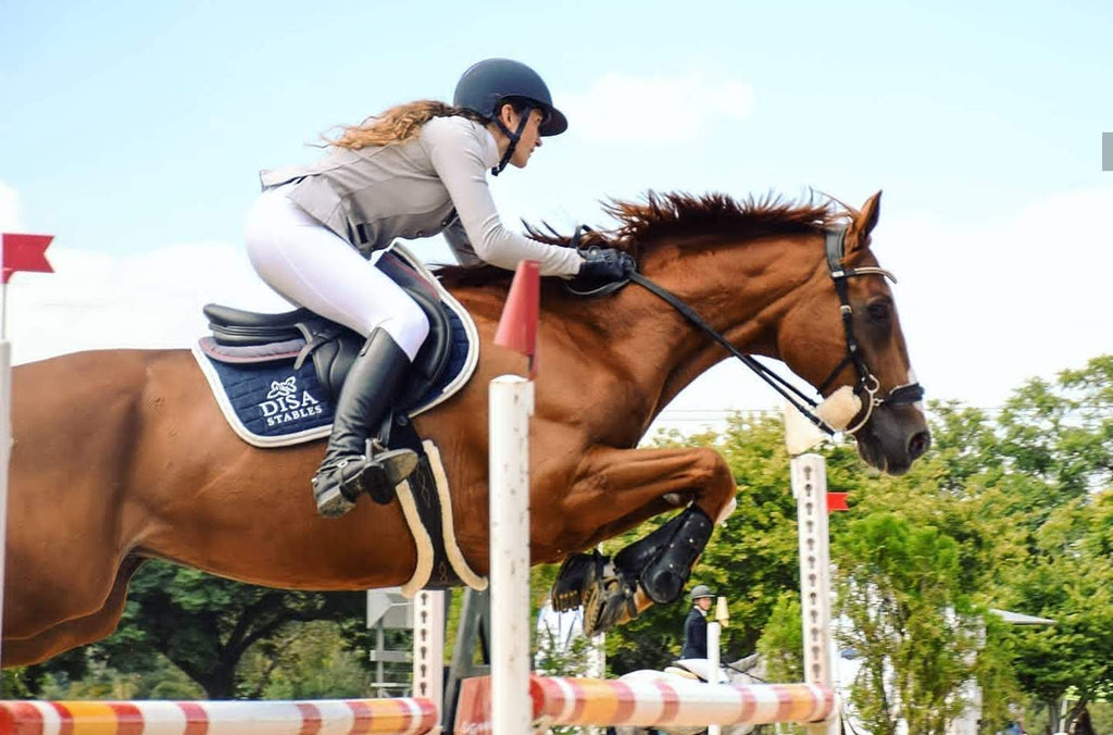 A show jumper wearing white joddies jumping 1.25m on a chestnut gelding
