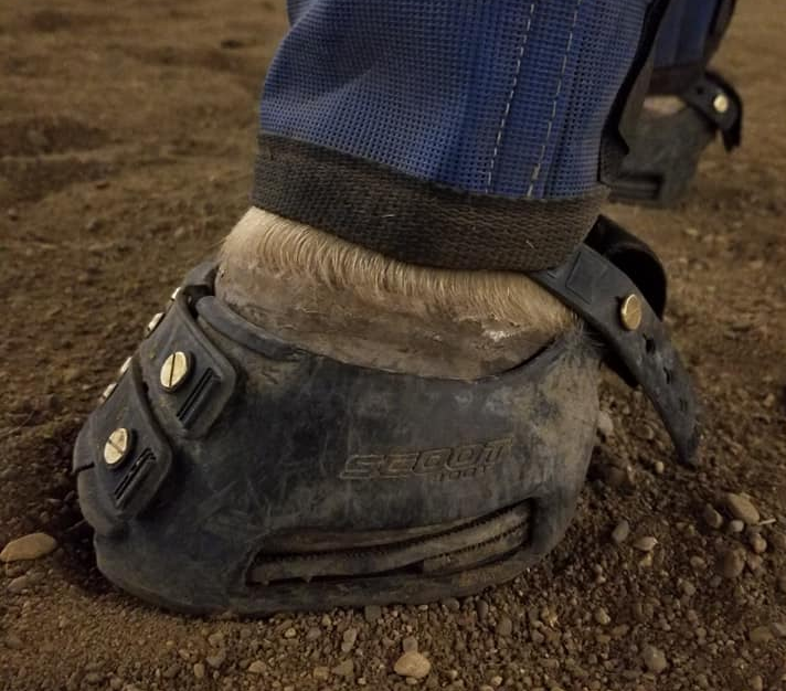 A white horse's hoof wearing a black Scoot Boot with a homemade wedge in the sole