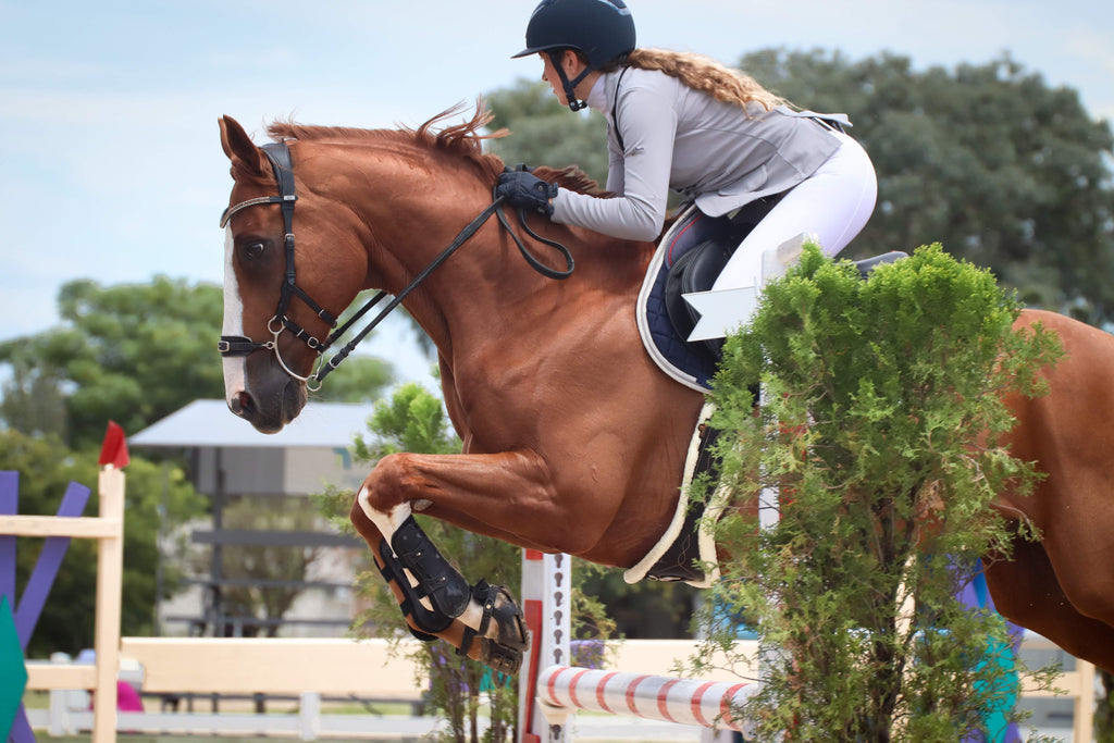 A woman jumping her chestnut horse over 1.25 metre jumps in a show jumping competition