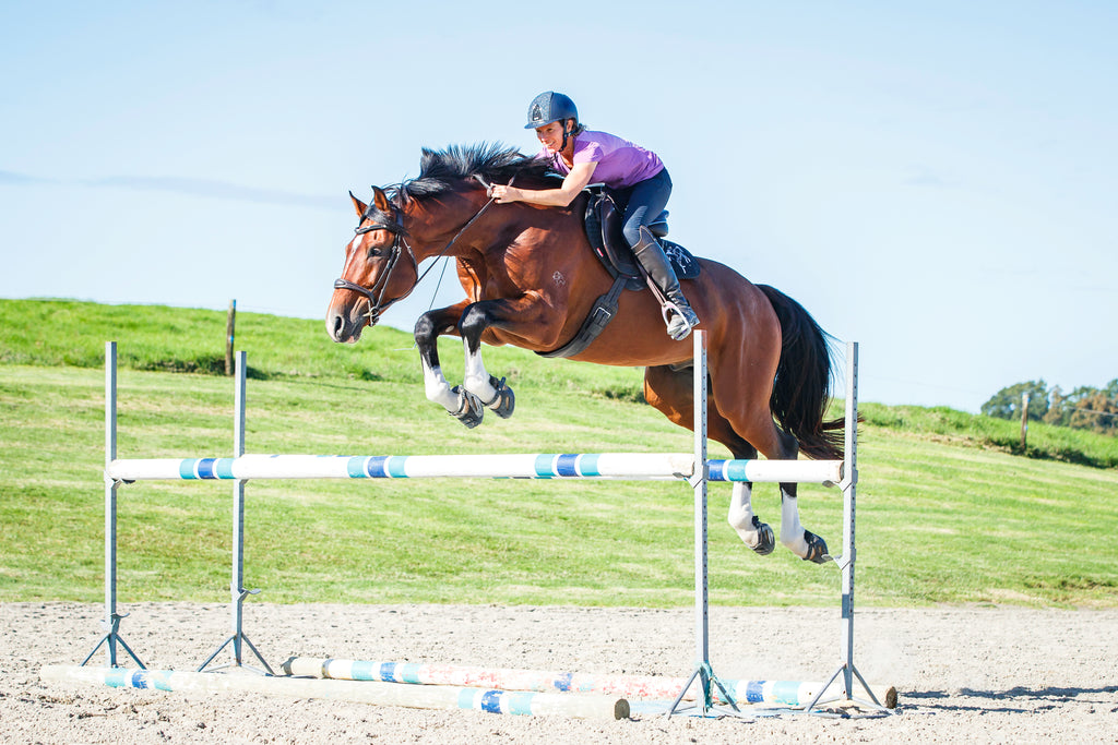 A woman wearing a purple top show jumping 1.5 metres on a brown and black horse in a sand arena
