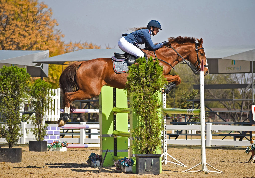 A woman wearing white joddies and a chestnut gelding jumping 1.25 metres in a showjumping competition