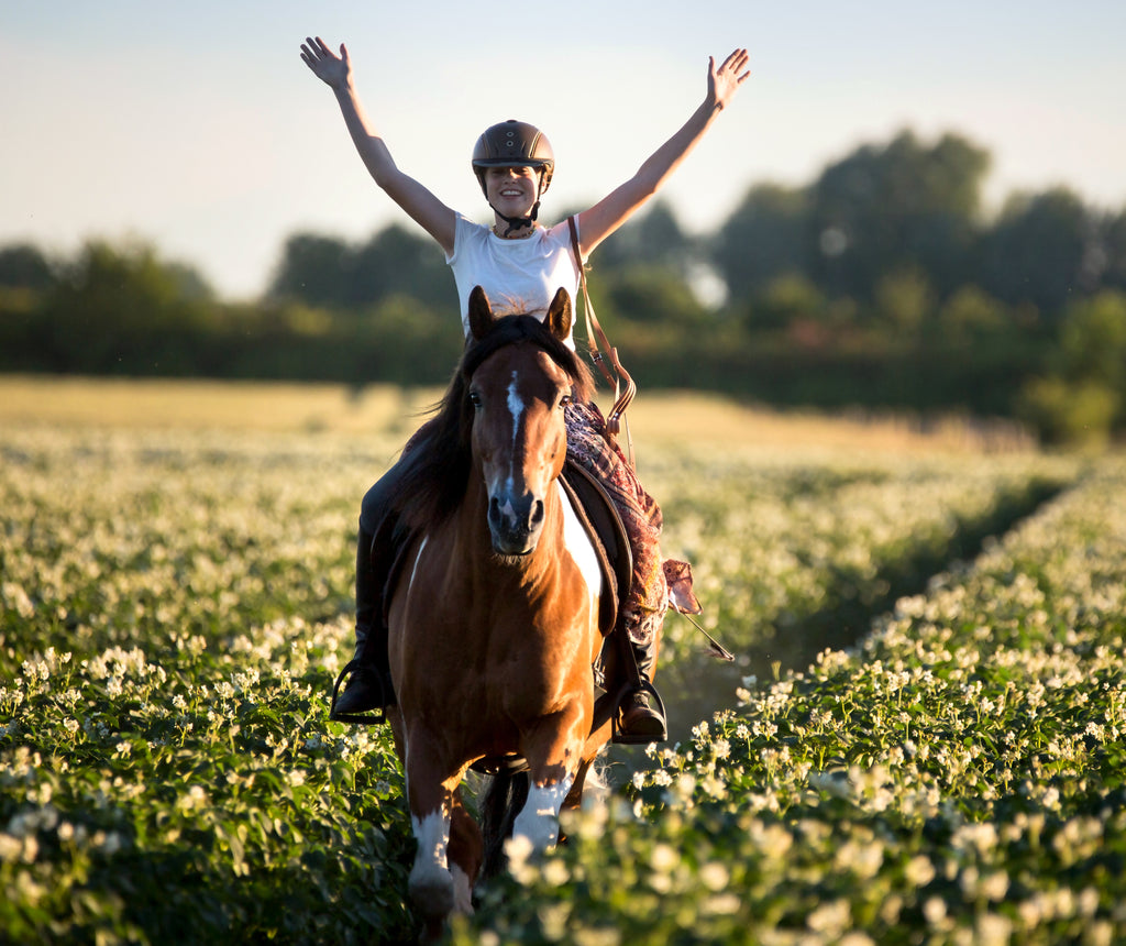 Girl riding without her hands on a brown horse