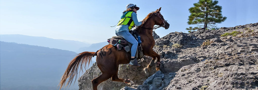 Brown horse wearing Scoot Skins cantering up a steep rocky hill in an endurance competition