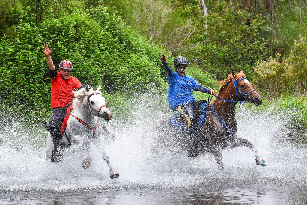 Riding horses wearing Scoot Boots through water