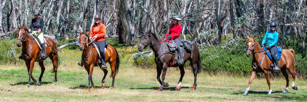 Four woman on a trail ride on black and brown horses all wearing green, orange, red and blue Scoot Boots