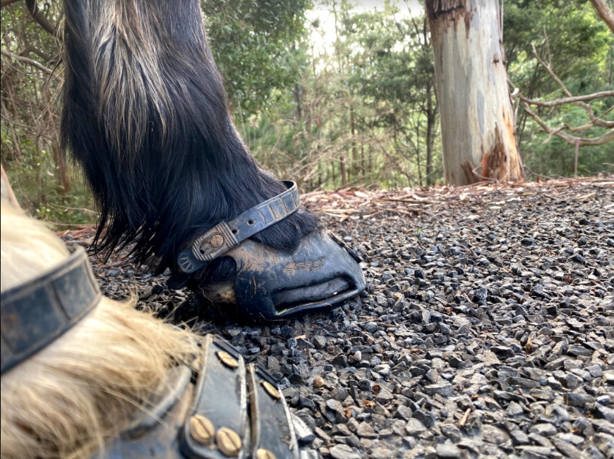 Make Sure you Avoid any Issues Along the Trail With the Help of Scoot Boots