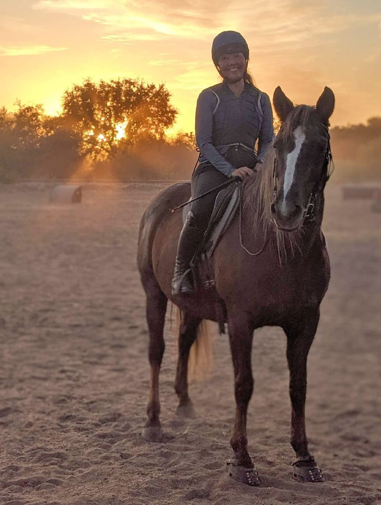 A brown horse being ridden on a sand arena at sunset