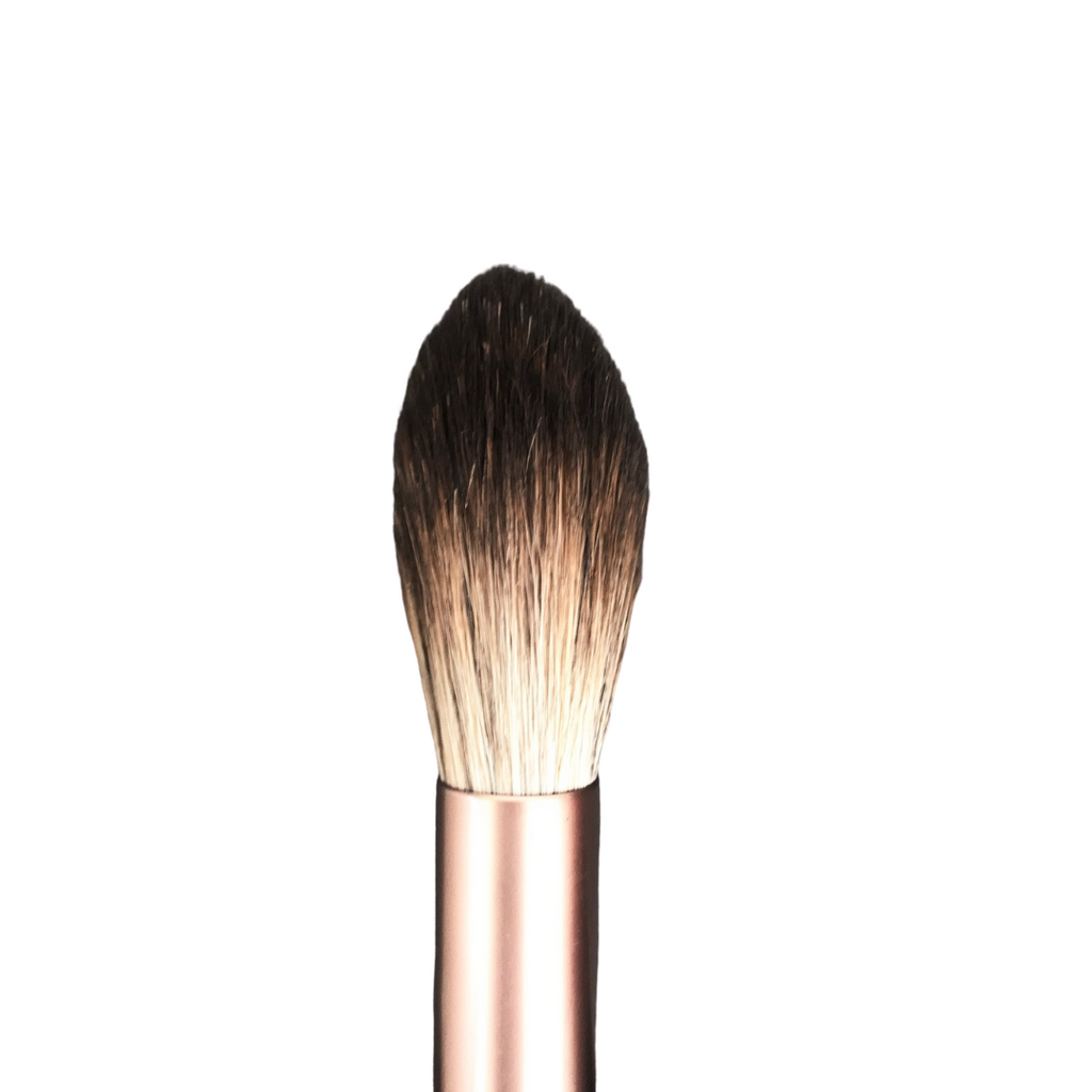 The Premium Highlighter Brush