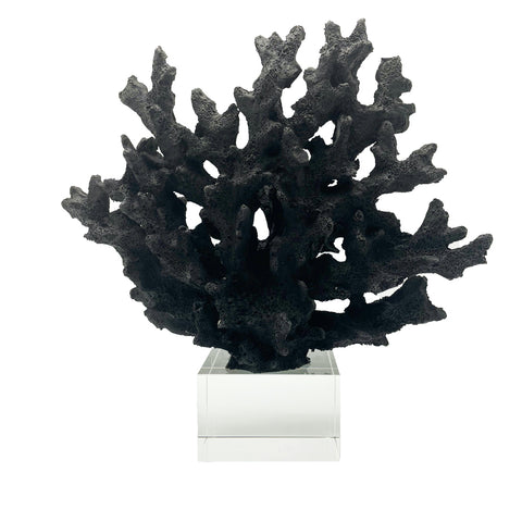 Coral Decor-Black