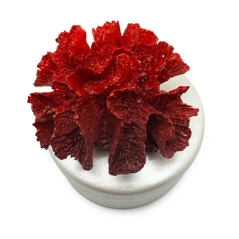 Coral Decorative Box-Red