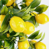 Artificial Lemon Plant