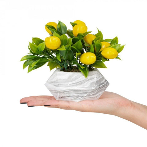 Artificial Lemon Plant in Marble Pot